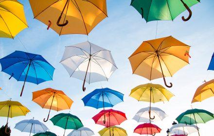 rows of umbrellas
